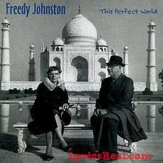 This Perfect World mp3 Album by Freedy Johnston