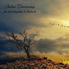 We Stood Boundless to the Earth mp3 Album by Calea Dreaming
