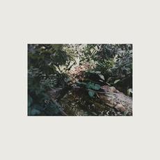 Tea for Two mp3 Album by Kasper Lindmark