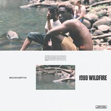 1999 WILDFIRE mp3 Single by Brockhampton