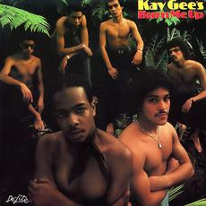 Burn Me Up (Remastered) mp3 Album by The Kay-Gees