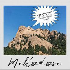 Fuck It (Bumpin Uglies Cover) mp3 Single by Mellodose