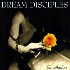 In Amber mp3 Album by Dream Disciples