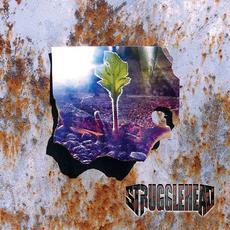 When Silence Fades mp3 Album by Strugglehead