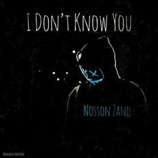 I Don't Know You mp3 Single by Nosson Zand