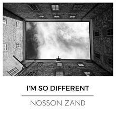 I'm So Different mp3 Single by Nosson Zand