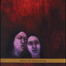 Short for Something mp3 Album by New Klezmer Trio