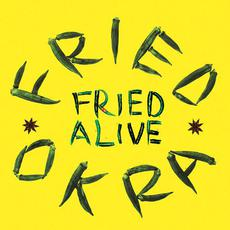 Fried Alive mp3 Live by The Fried Okra Band