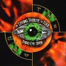 Third Eye Open: The String Quartet Tribute to Tool mp3 Album by Vitamin String Quartet