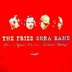 This Is Your Chance, France Baby! mp3 Album by The Fried Okra Band
