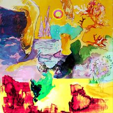 Sky Dog Floating in a Land of Impossible Color Combinations mp3 Album by Self Assistance