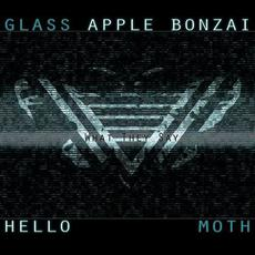 What They Say mp3 Single by Glass Apple Bonzai