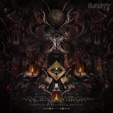 Ancient Wisdom, Vol.2 mp3 Compilation by Various Artists