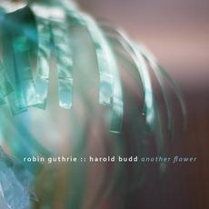 Another Flower mp3 Album by Robin Guthrie & Harold Budd