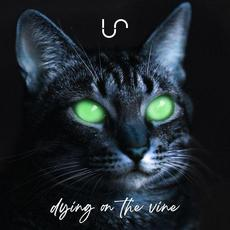Dying on the Vine mp3 Single by Unify Separate
