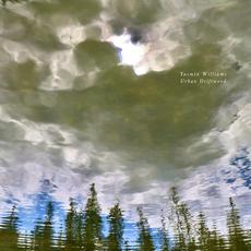 Urban Driftwood mp3 Album by Yasmin Williams