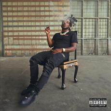 Internal Affairs mp3 Album by Mozzy