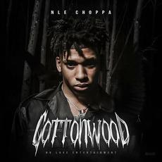 Cottonwood mp3 Album by NLE Choppa