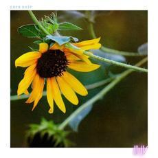 Part III / Part IV mp3 Album by Cara Neir