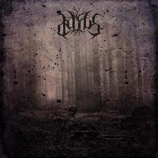 Ascuns mp3 Album by Daius