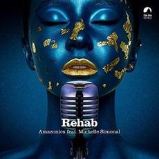 Rehab mp3 Single by Amazonics