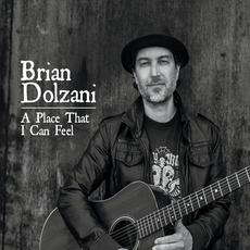 A Place That I Can Feel mp3 Album by Brian Dolzani