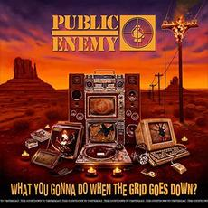 What You Gonna Do When the Grid Goes Down? mp3 Album by Public Enemy