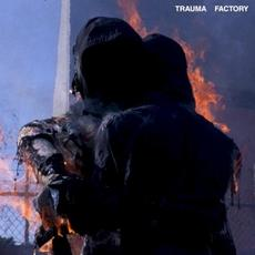Trauma Factory mp3 Album by nothing,nowhere.