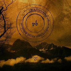 Tinnitus mp3 Album by Profond Barathre