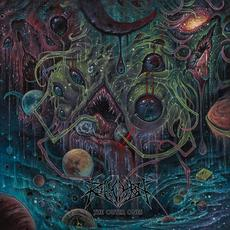 The Outer Ones mp3 Album by Revocation