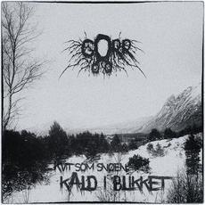Kvit som snøen, kald i blikket mp3 Album by Gorr