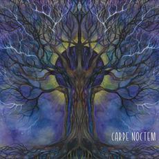 Carpe Noctem mp3 Compilation by Various Artists