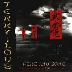Here And Gone mp3 Album by Terry Ilous