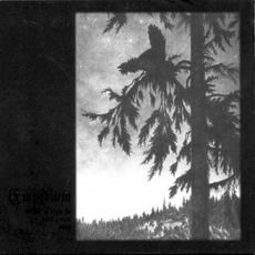 Where at Night the Wood Grouse Plays mp3 Album by Empyrium