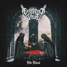 Vile Ritual mp3 Album by Exstinctio Vitae