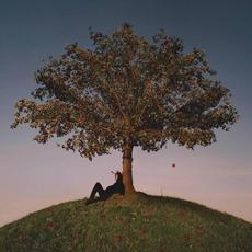 TYRON mp3 Album by slowthai
