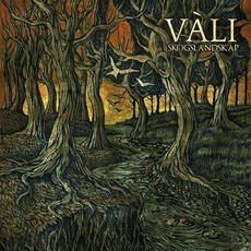 Skogslandskap mp3 Album by Vàli