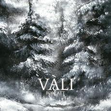 Forlatt mp3 Album by Vàli