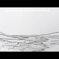 Fecund In The Flood mp3 Album by Chris Brokaw