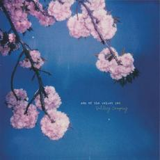 Solitary Company mp3 Album by Son of the Velvet Rat