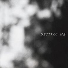 Destroy Me (Alternative Version) mp3 Single by PALESKIN