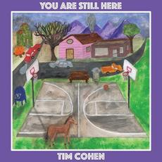 You Are Still Here mp3 Album by Tim Cohen