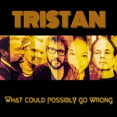What Could Possibly Go Wrong mp3 Album by Tristan