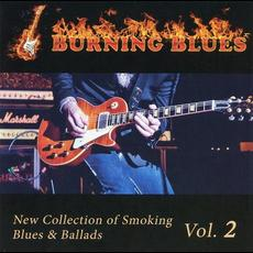 Burning Blues vol.2 mp3 Compilation by Various Artists