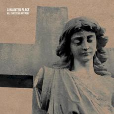 A Haunted Place mp3 Album by Kill Shelter & Antipole