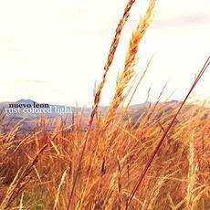 Rust Colored Light mp3 Album by Nuevo Leon