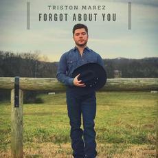 Forgot About You mp3 Single by Triston Marez