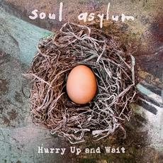 Hurry Up And Wait mp3 Album by Soul Asylum