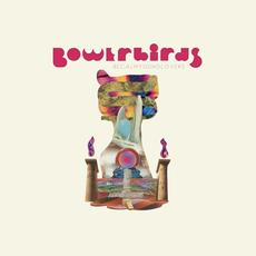 becalmyounglovers mp3 Album by Bowerbirds