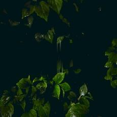 Music for Empty Flats mp3 Album by Martina Bertoni